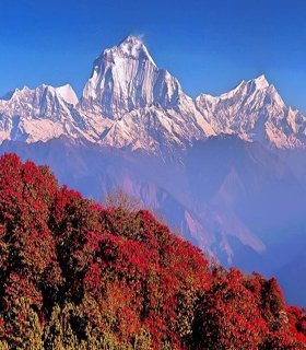 best annapurna panorama trekking nepal