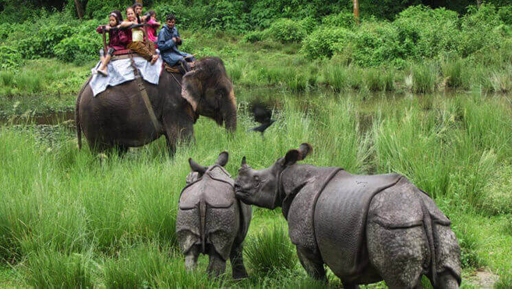 chitwan jungle safari tours in Nepal