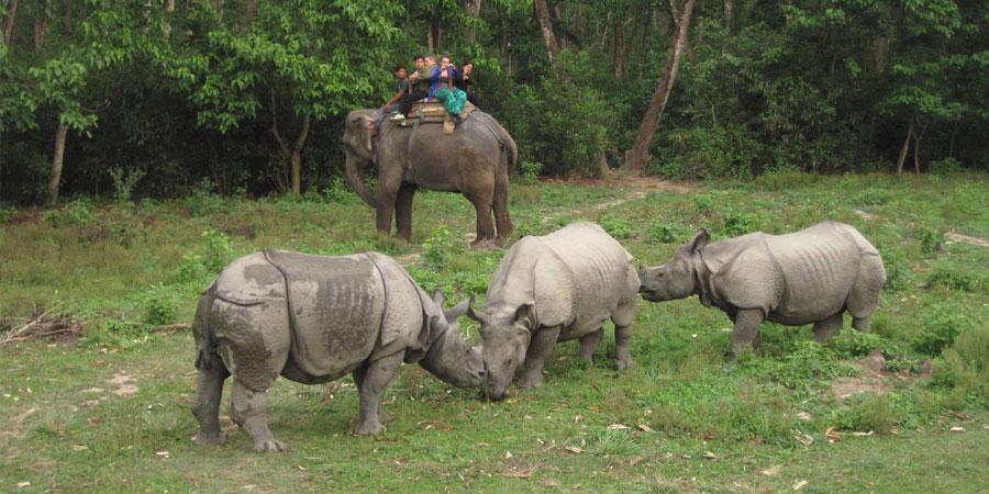 Kathmandu Chitwan Tour in Nepal