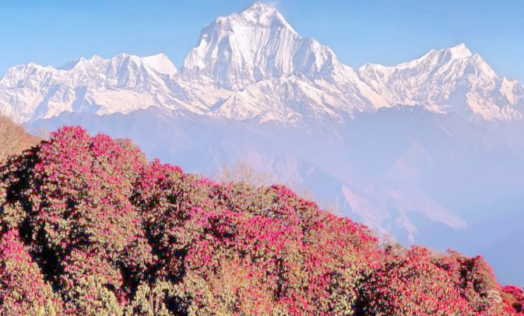 Best trekking in nepal for beginners