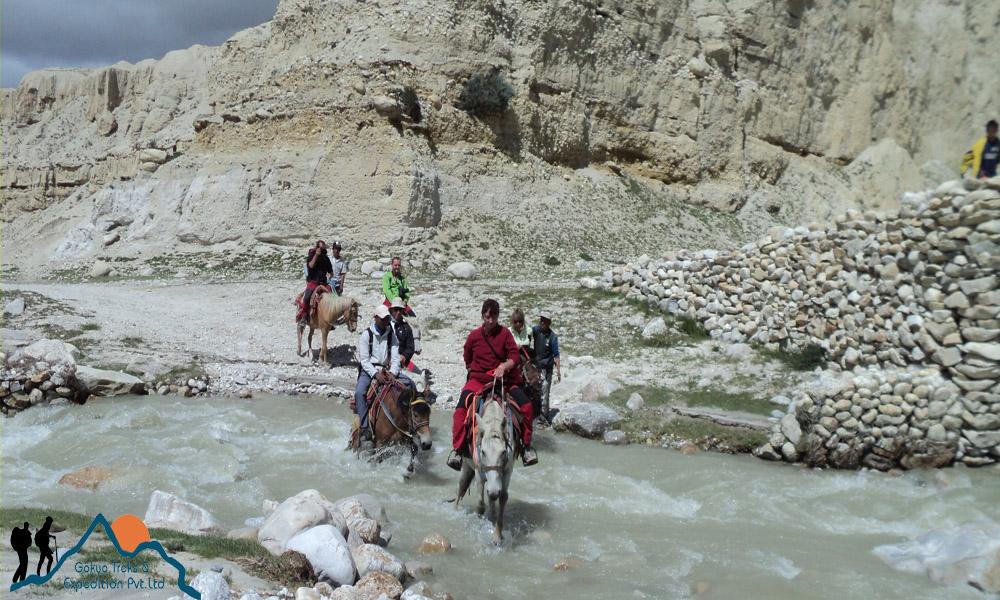 mustang pony trekking