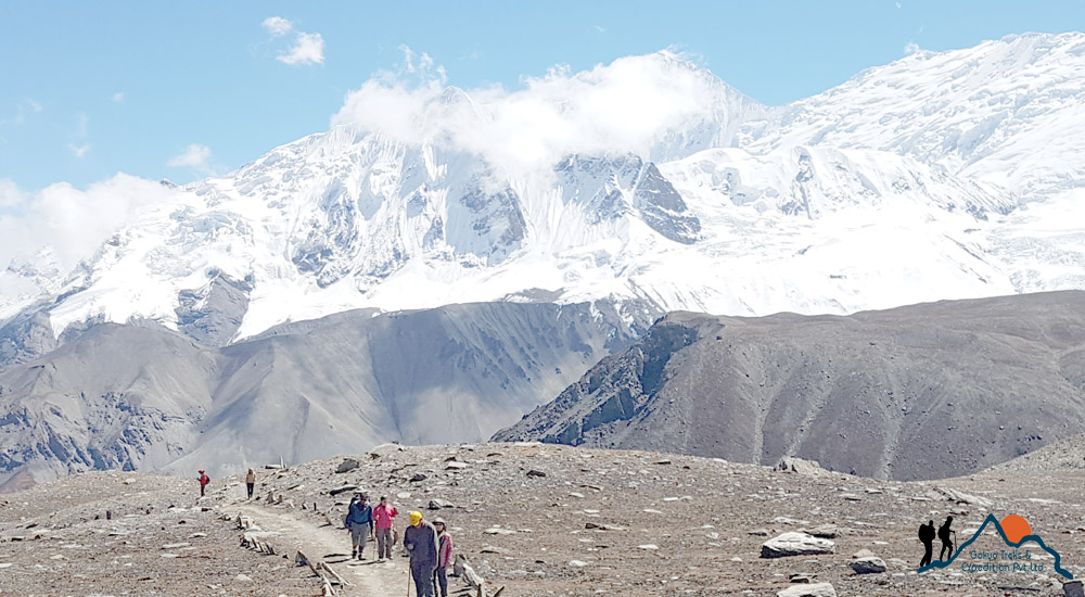tilicho lake trek team